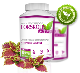 forskolin czech